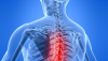 Tone, Tensegrity and Chiropractic