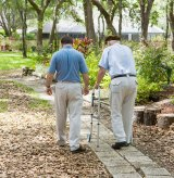 Research Shows Parkinson's Helped with Chiropractic Care